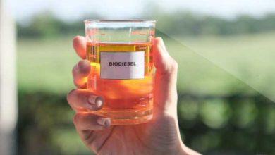 Photo of Biodiesel Dari Minyak Sawit
